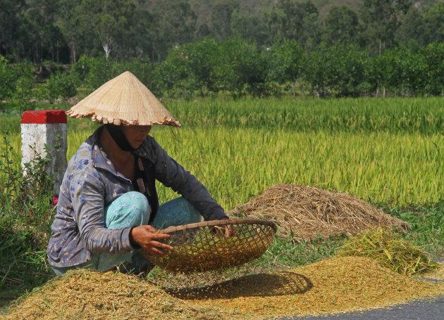 Rijst zeven