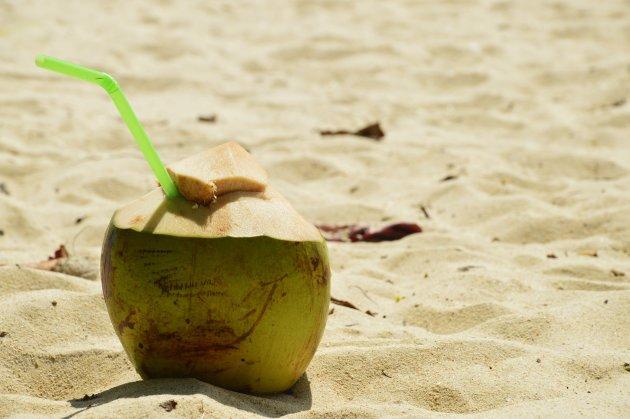 Jonge kokosnoot op Phra Nang Beach