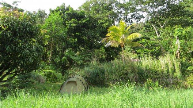 Wildkamperen @ Dominica