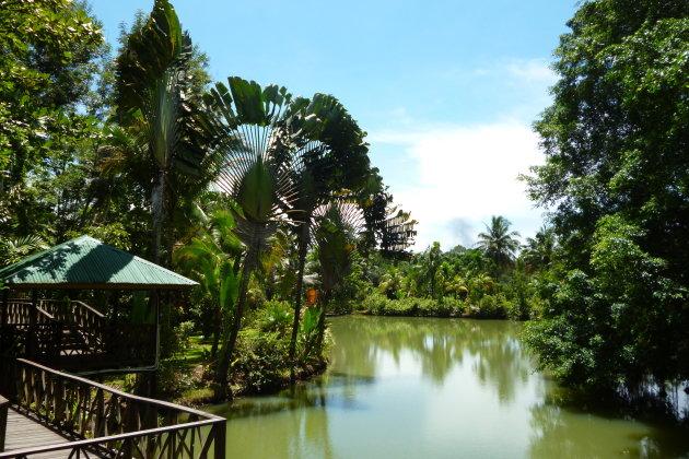 De schoonheid van Sandakan, Borneo