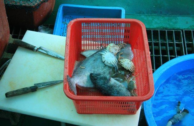 Sinnam Vismarktvangst