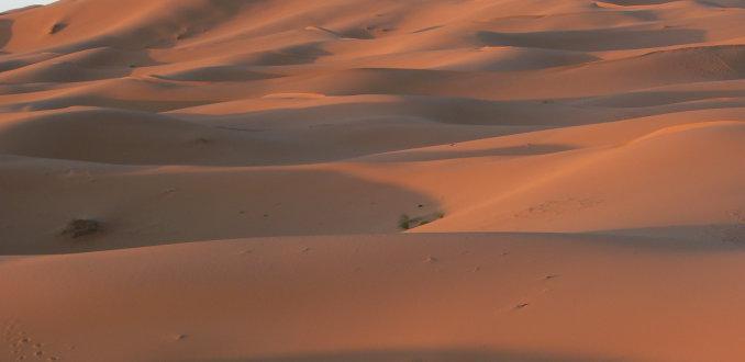 Zandduinen van Merzouga