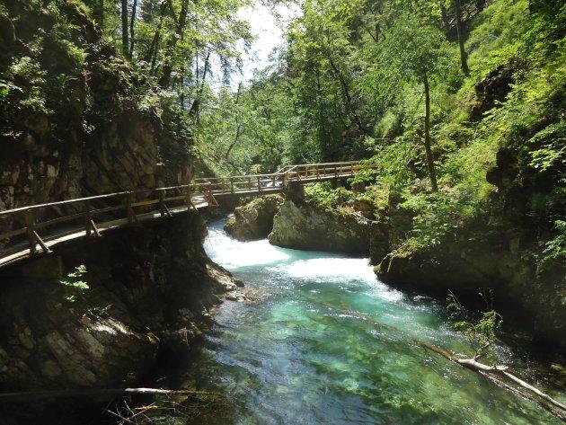 De Vintgar kloof, een juweeltje net buiten Bled