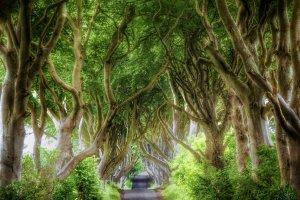 Shortbreak Noord-Ierland