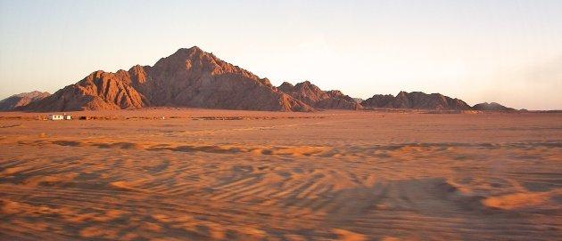 Sinaïwoestijn