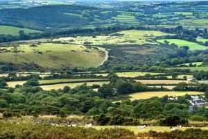 Op pad in Dartmoor