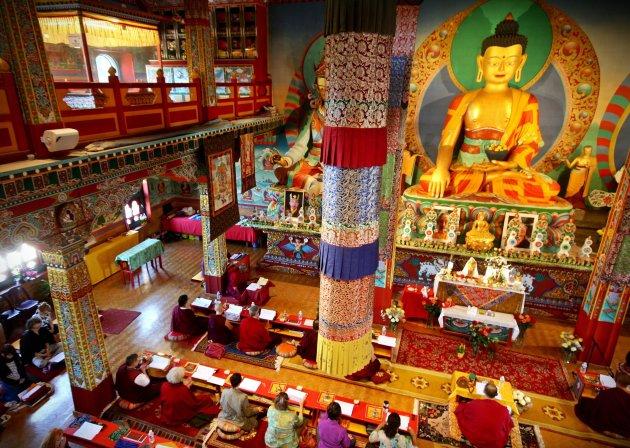 boeddhisme voor vrede