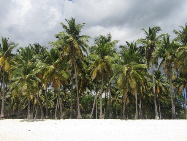 Galawa beach I