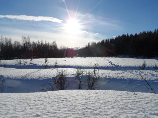 Sneeuwschoenen aan en wandelen maar...