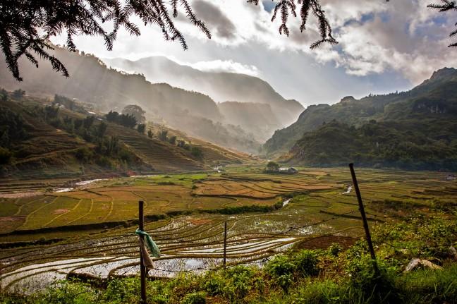 rijst en bergen