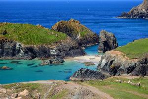 (Sub) tropisch Cornwall