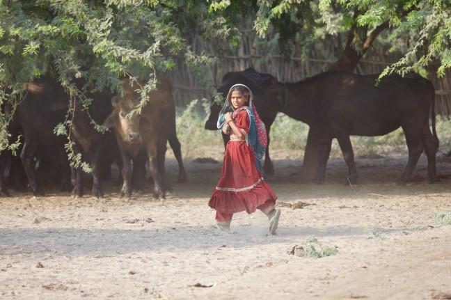 boeren meisje