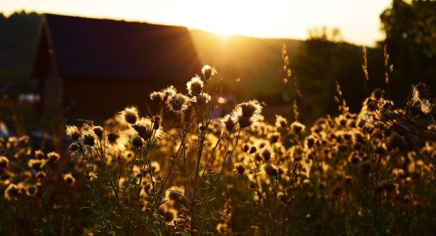 Einde van de zomer...