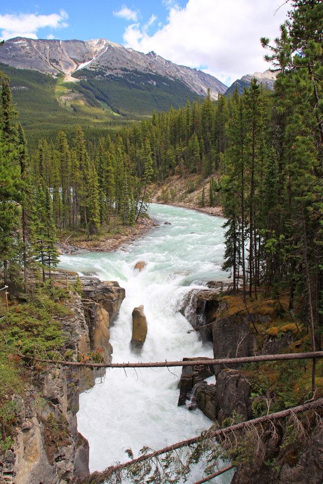 Wild wild Canada
