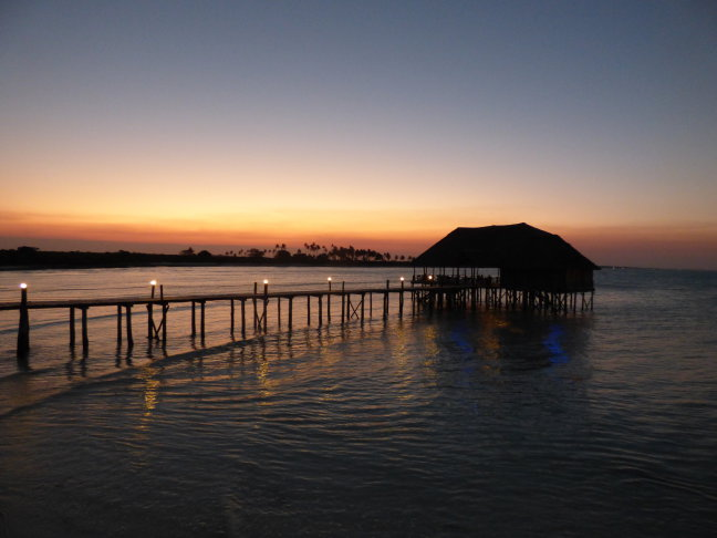 Typical Tropical op Zanzibar