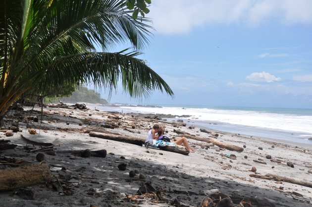 De natuur en zijn stranden,