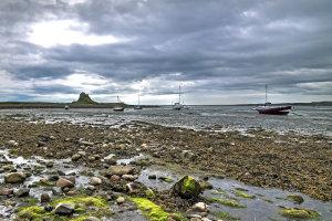 Wadlopen naar Lindisfarne