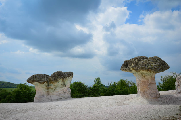 De stenen paddestoelen