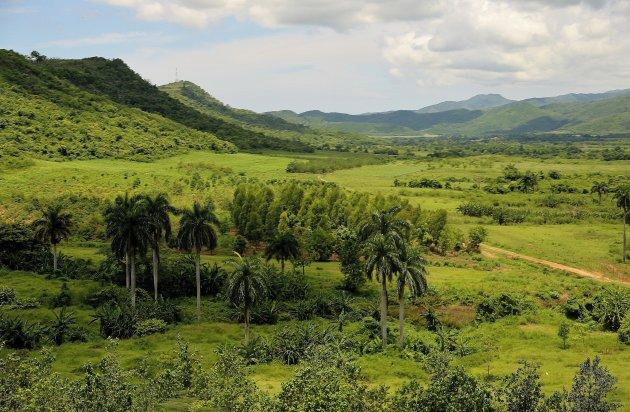 Zo groen als Cuba