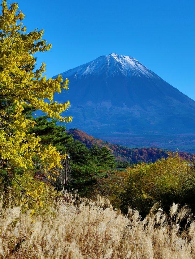 Fuji-san autumn