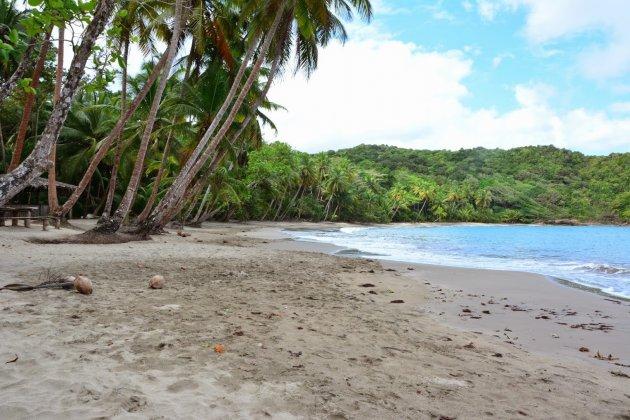 Hoezo geen Stranden op Dominica?
