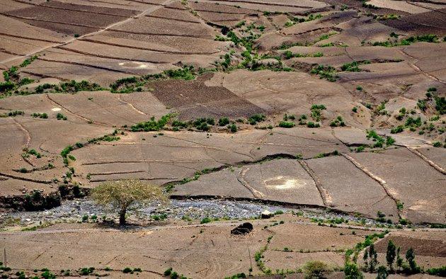 Een landschap van vlakken en lijnen