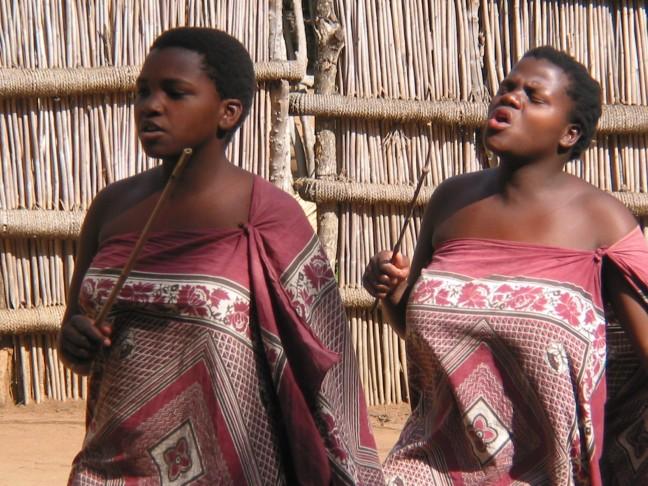 Swazidans