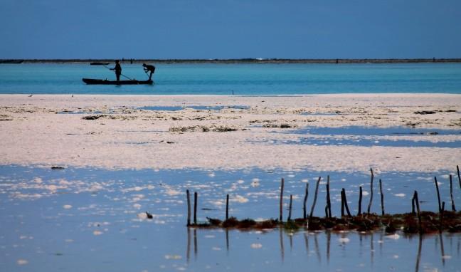 Visserij langs de Kust van Zanzibar