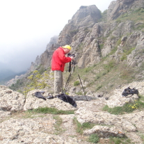 '54433' door Matthieu