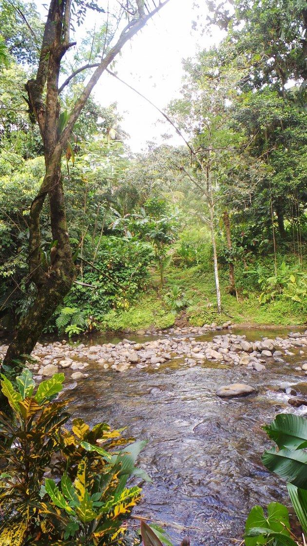 Dominica Jacko steps wandeling