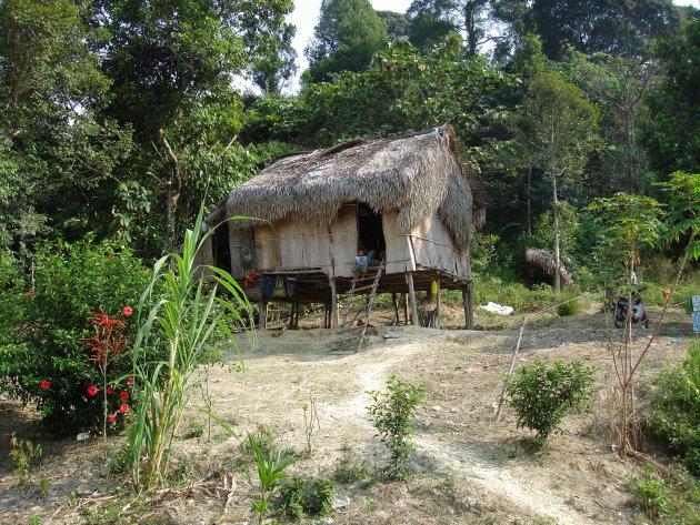 Huis op palen