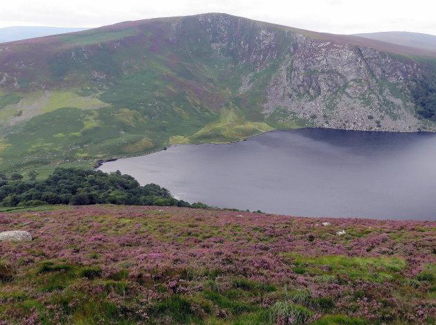 Het Guinness meer