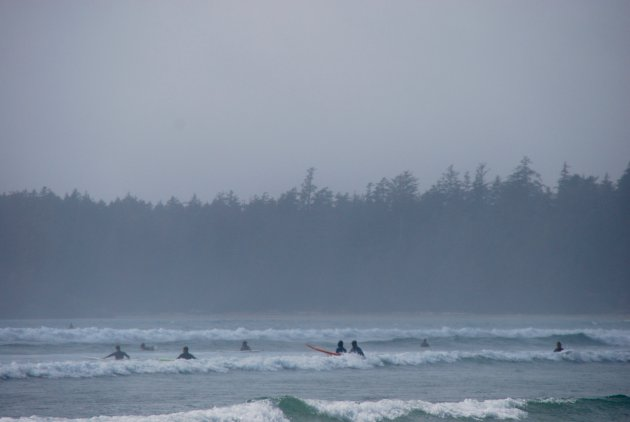 Surfen bij Long Beach