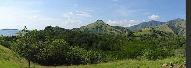 Panorama groen Flores