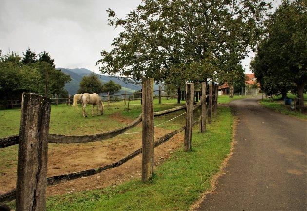 Het vredige Baskisch platteland