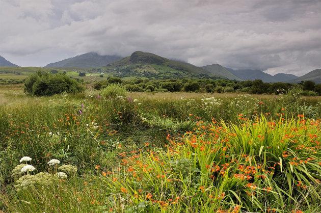 Paradijsje langs Connemara NP