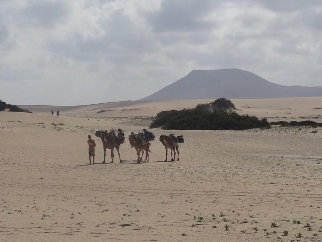 Een kleine woestijn