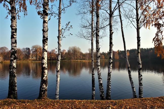 Meer in Druskininkai