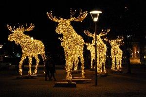 Kerstsfeer in Stockholm