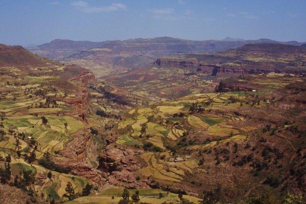 Landschap in Noord-Ethiopië