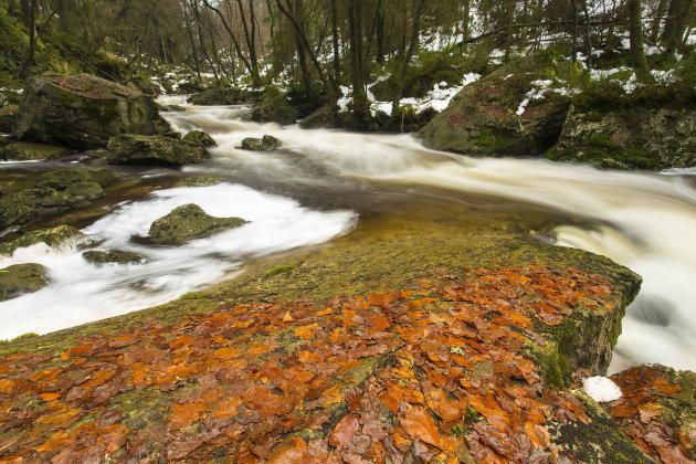 rivier de Hoegne