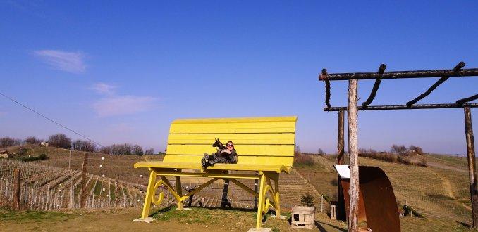 Big Bench Project in Piemonte