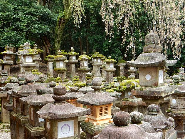 Tempel van 1000 lantaarns