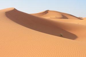 De betoverende Sahara