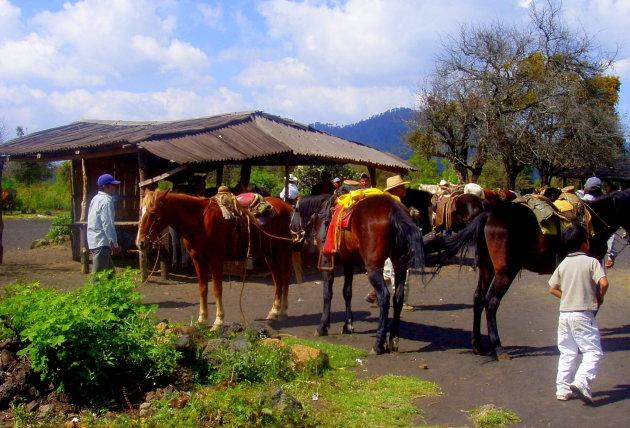 Te paard naar de vulkaan