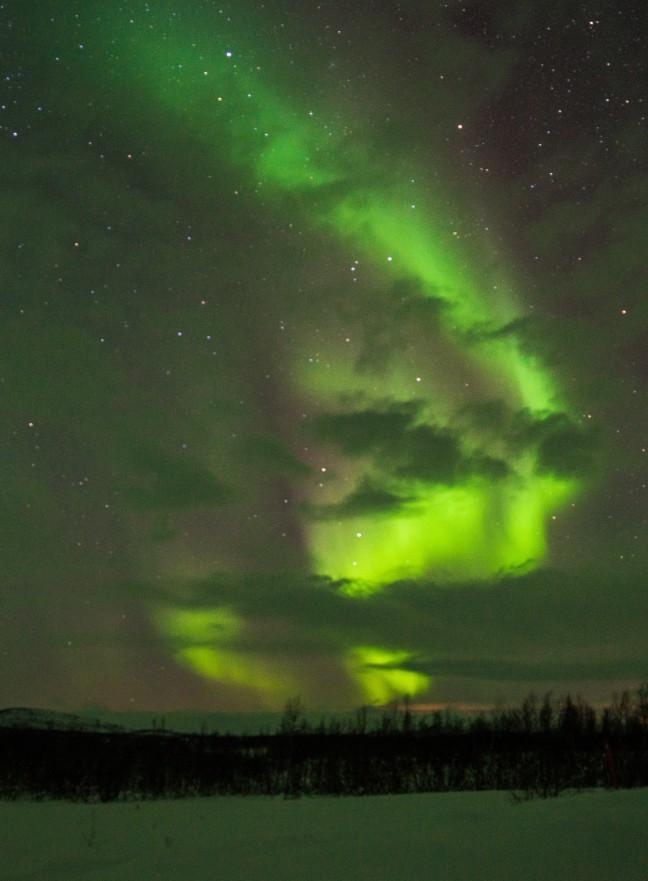 Noorderlicht safari naar Lapland