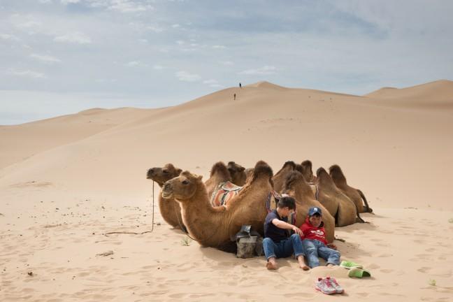 Kamelen rit naar Khongoryn Els