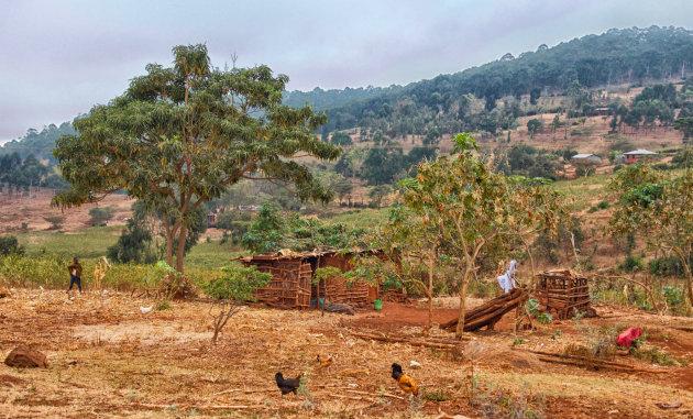 Leven op het platteland