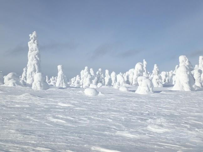 Witte standbeelden op de Luosto, 514 m.
