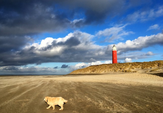 Mooi Texel